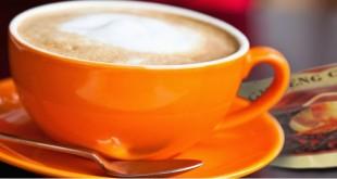 caffe-ginseng2